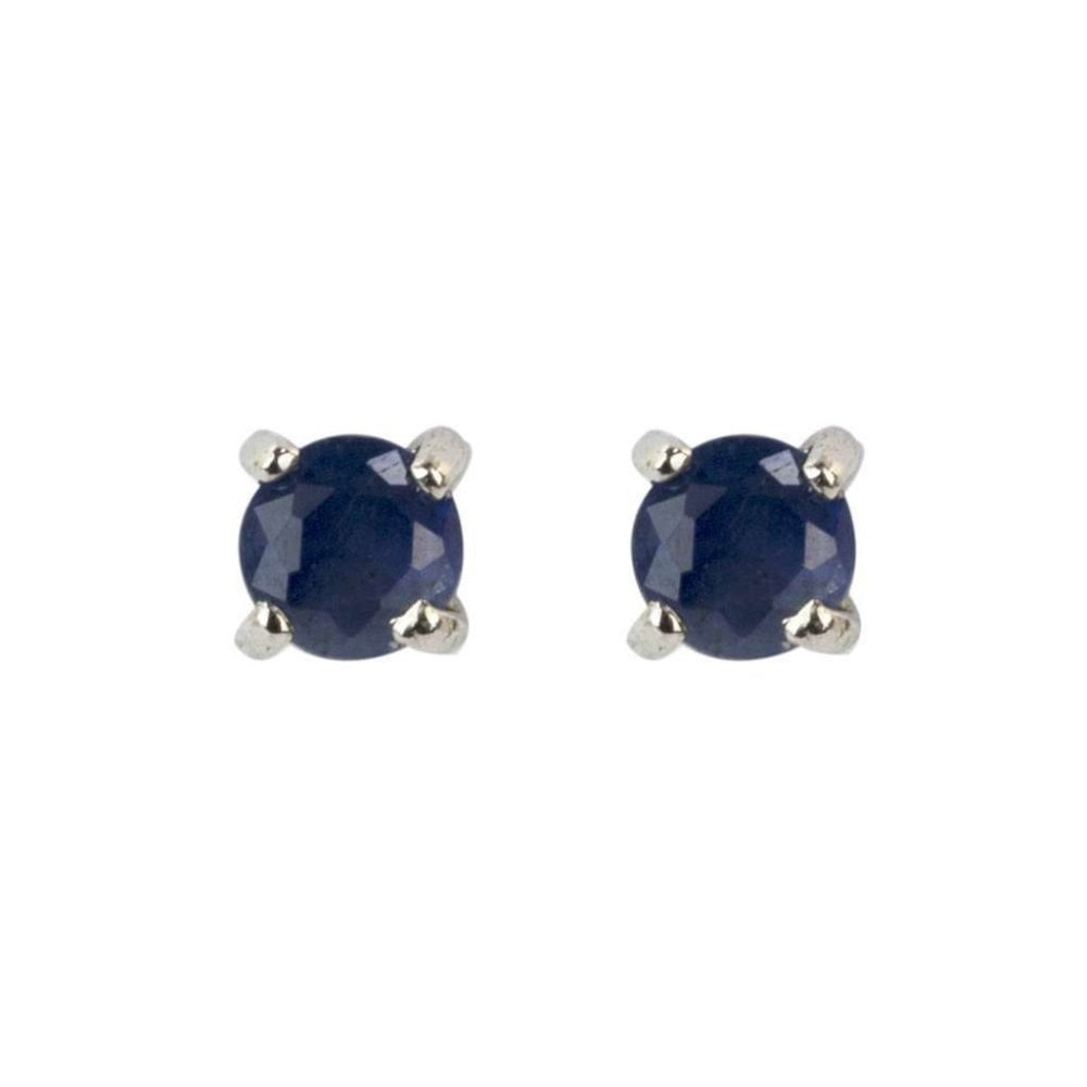 1655d9d0c6b43 9ct White Gold Small Sapphire Stud Earrings